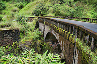 Road to Hana, Maui (#3)