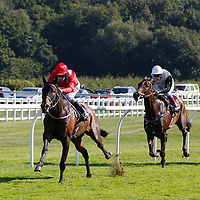 Poitin and Tom Queally winning the 3.50 race