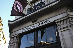 November 3, 2018 - London, England, United Kingdom - An animalist demonstration took place outside Regent Street's Canada Goose, London on November 3, 2018. Canada Goose, which makes luxury winter clothing, opened its flagship UK store on the capital's iconic Regent Street. The Canadian brand has faced global criticism for producing parka jackets with a trim made from coyote fur, which animal rights group PETA claim are caught in the wild in steel traps. (Credit Image: © Alberto Pezzali/NurPhoto via ZUMA Press)
