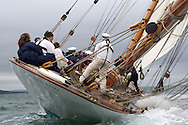 ENGLAND, Cowes, 7th July 2010, Westward Cup, Mariquita.