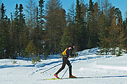 Cross country skiiing in boreal forest <br />Kenora<br />Ontario<br />Canada