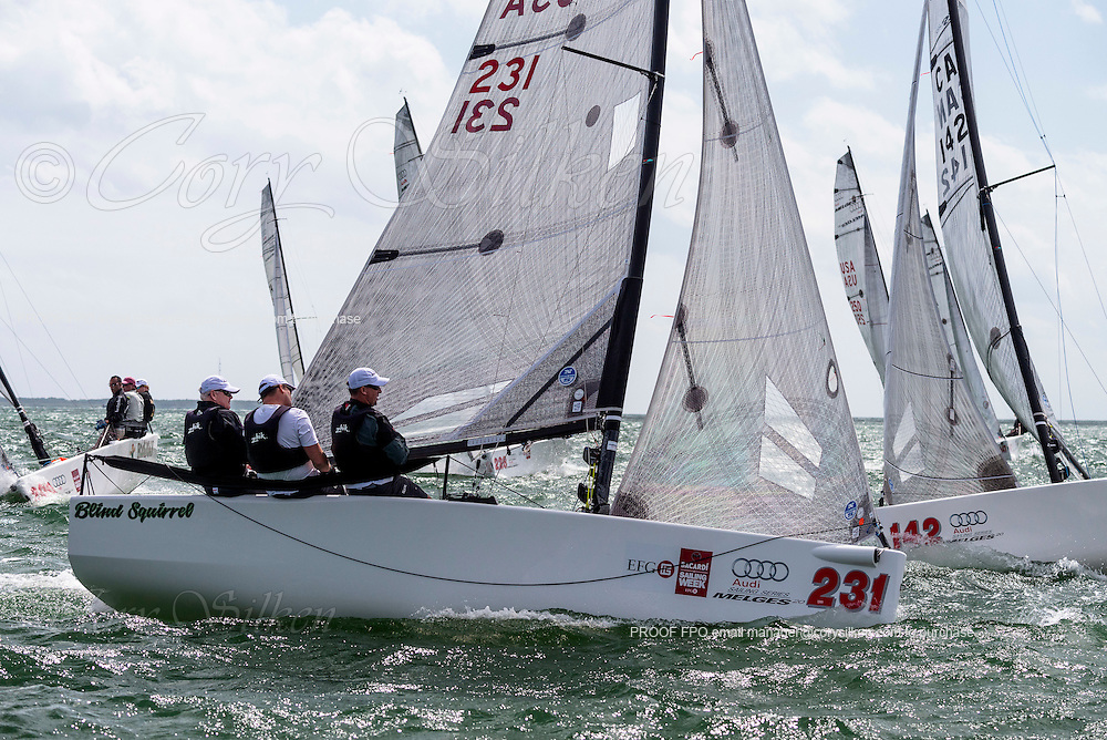 Blind Squirrel sailing in Bacardi Miami Sailing Week, day five.