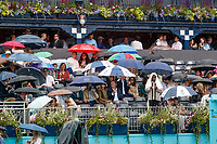 Tennis - 2019 Queen's Club Fever-Tree Championships - Day Two, Tuesday<br /> <br />  A few hardy soles sit under umbrellas in the members enclosure as rain delays the start of todays proceedings at The Queens Club.<br />  <br /> COLORSPORT/DANIEL BEARHAM
