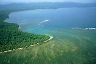 Coral Reef<br /> Cahuita NP<br /> Costa Rica<br /> Code / C&oacute;digo #V0121<br /> &copy;Adrian Hepworth
