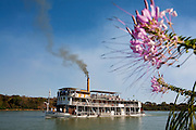 Pirapora_MG, Brasil...Rio Sao Francisco, o rio da integracao nacional. Na foto, detalhe de uma flor com o barco a vapor Benjamim Guimaraes ao fundo...The Sao Francisco river, It is an important river for Brazil, called the river of national integration. In this photo, a flower with the steam paddle boat Benjamim Guimaraes in the background...Foto: LEO DRUMOND / NITRO