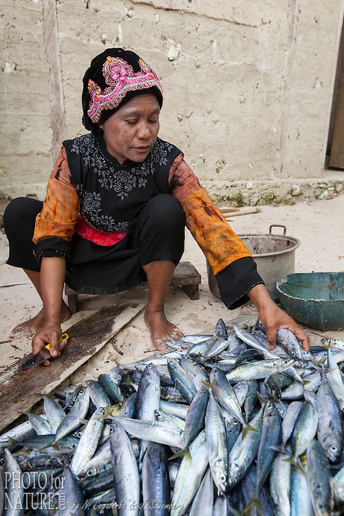 Indonésie, Province des Moluques, Seram Occidental, île de Grogos, femme nétoyant les poissons de la pêche // Indonesia, Maluku, East Seram, Grogos Island, woman preparing fishes