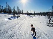 Skitur, skiing in Norway.