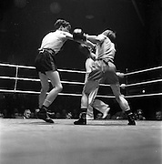 15/03/1963<br /> 03/15/1963<br /> 15 March 1963<br /> National Senior Boxing Championships at the National Stadium, Dublin. S. McCafferty (left) St. John Bosco Boxing Club, Belfast, lands a right on the body of J. Black, Lourdes Boxing Club, Drogheda during the Semi-final of the Flyweight Class. McCafferty won on points.