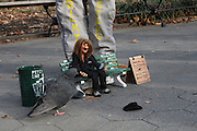 Manhattan, NY. Nov. 30, 2013. Ricky Syers delivers his newest marionette, Larry the pigeon guy to the real-life Larry in Washington Square Park. 11302013. Photo by Kayle Hope Schnell/CUNY Photo Wire