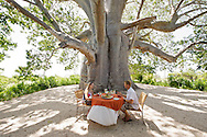 Lunch under the giant baobab tree at Matemo lodge in the Quirimbas archipelago in Mozambique.