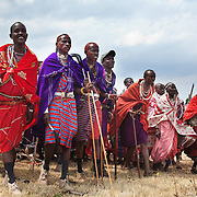 Wilson's wedding day...Wilson is arriving to his home boma with his friends Amos, his best man, Sherrsen  to introduce the community to his new wife. ..It is mainly Maasais who live in the Loita Hills up above the Serengeti plains. They live in small villages and communities called bomas and live mainly of raising and selling live stock such as cattle and goats. Its a very remote region in Kenya, hard to get to without a four wheel drive with very little infrastructure and up till 2010 no mobile phone network. The Maasais are well known though out Kenya and the world for their colorful clothing and their way of keeping their old traditions alive.