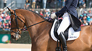 Clark Montgomery (USA) and Loughan Glenduring the Rolex Kentucky 3-Day Event at the Kentucky Horse Park in Lexington, Kentucky, April 28, 2017.