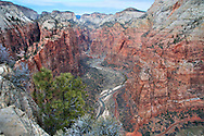 Upper Zion Canyon from Angels Landing.  The road ends at the Temple of Sinawava, where the canyon narrows considerably.