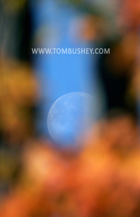 Middletown, N.Y. -  The moon is framed by out of focus yellow maple leavs on Oct. 31, 2007.