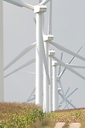 Wind turbines near Montello, Wisconsin; Florida Power & Light