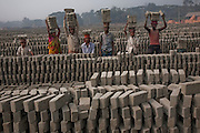 Factory workers carry bricks at the JRB brick factory near Sonargaon, outside Dhaka, Bangladesh. The heavy clay soils along the river near the market town of Sonargaon are well suited for making bricks. At the JRB brick factory, workers of all ages move raw bricks from long, stacked rows, where they first dry in the sun, to the smoky coal-fired kilns. After being fired, the bricks turn red. A foreman keeps tally, handing the workers colored plastic tokens corresponding to the number of bricks they carry past him. They cash in the chips at the end of each shift, taking home the equivalent of $2 to $4 (USD) a day.