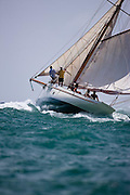 Thalia racing in the Grenada Classic Yacht Regatta.