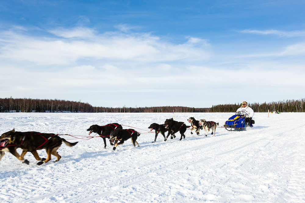 Musher Michael Williams Sr. competing in the 41st Iditarod Trail Sled Dog Race on Long Lake after leaving the Willow Lake area at the restart in Southcentral Alaska.  Afternoon.