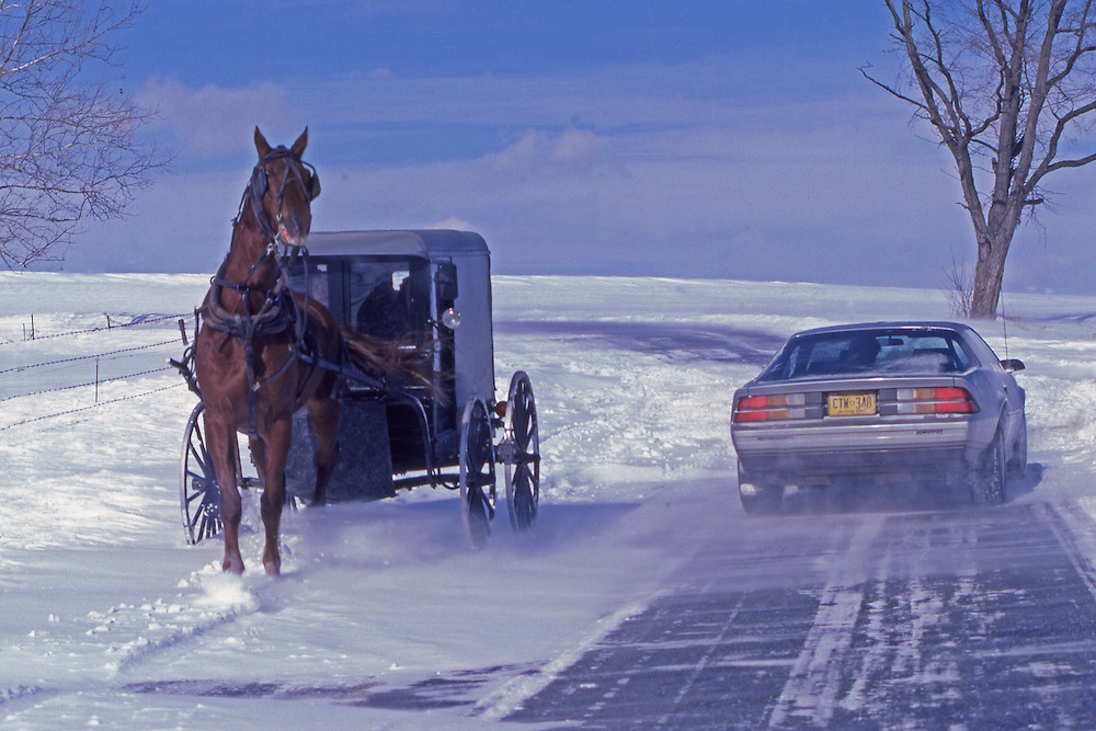 Amish horse and buggy and auto pass on rural  snow covered road, Leola, Lancaster County, PA