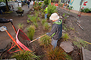Tyson Leggate and Josh Lighthipe volunteer at the rain garden work meet, Café au Play at Tabor Commons, a project of the Southeast Uplift Neighborhood Coalition (SEUL) and volunteers from Portland's Mt Tabor neighborhood.