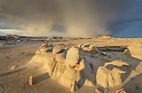 Approaching storm over Bisti Badlands, Bisti/De-Na-Zin Wilderness, New Mexico