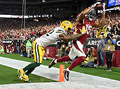 20160116 - NFC Divisional - Green Bay Packers @ Arizona Cardinals