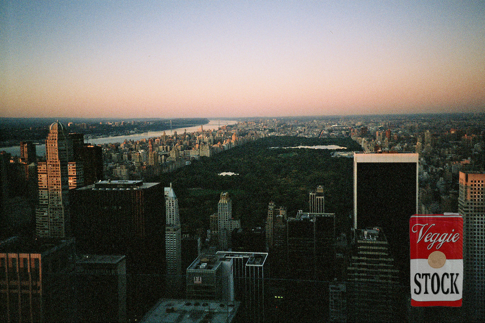 Central Park and uptown Manhattan from the top of the Rockefeller Center at sunset, New York, USA, October 2009.