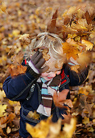 Boy (3-4) playing in autumn leaves