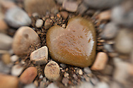 Heart Rock Lensbaby