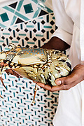 Mozambique lobster at Anantara Bazaruto Island Resort