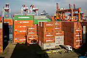 Containers are loaded onto trucks and driven to the ship before acrane loads them aboard. The Port of Jakarta also known as Tanjung Priok Port is the largest Indonesian seaport and one of the largest seaports in the Java Sea basin, with an annual traffic capacity of around 45 million tonnes of cargo and 4,000,000 TEU's.This port is located in Tanjung Priok, North Jakarta.
