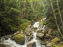United States, Washington, Mt. Baker-Snoqualmie National Forest, waterfall