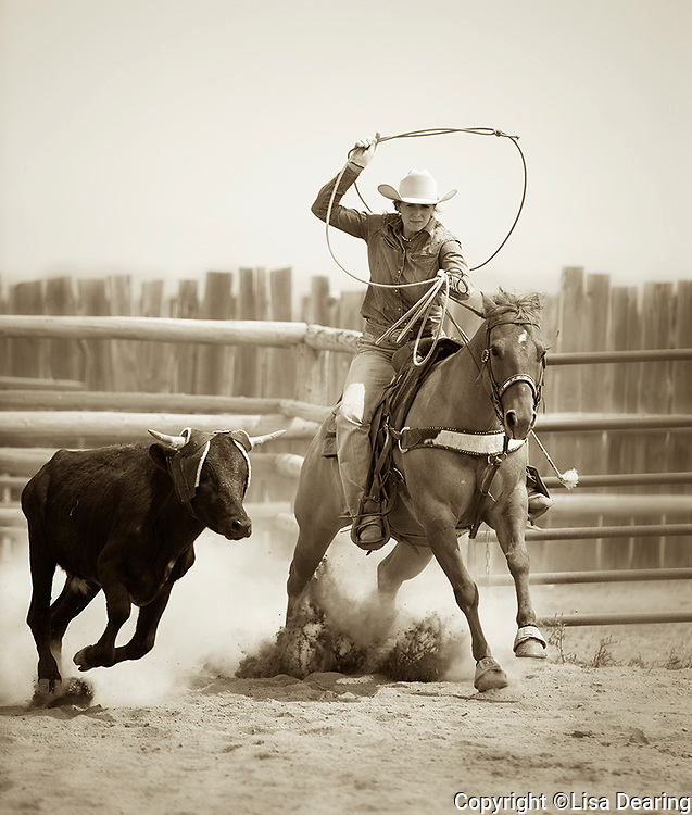Cowgirl Roping a Cow