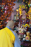La fête du Têt, Le nouvel an vietnamien, est la fête la plus importante de l'année. C'est l'occasion pour les familles d'aller au temple.