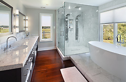 3602 Willow Birch Drive Glenwood, MD interior architecture master bathroom