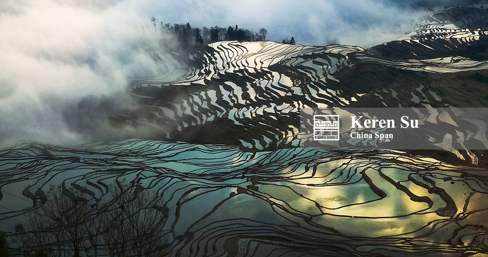 Landscape of water filled rice terraces in morning mist in the mountain, Yuanyang, Yunnan Province, China, 2005
