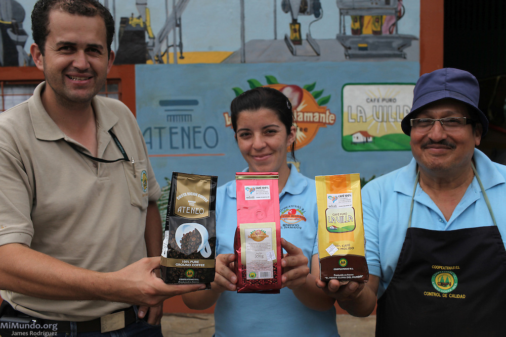 From left to right: Armando Carranza Hernández, Laura Garita Arce, and Manuel Campos Chávez display three of the coffee brands produced by COOPEATENAS. COOPEATENAS, Atenas, Alajuela, Costa Rica. August 23, 2012.