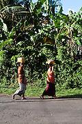 Kerambitan, Bali