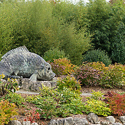 South Seattle College Seattle Chinese Garden and Arboretum. Photo by Alabastro Photography.