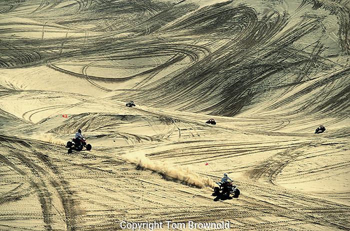 Algondones Sand Dunes