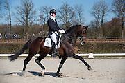 Diederik van Silfhout - Don Tango B<br /> Selectie WK Jonge Dressuurpaarden 2013<br /> © DigiShots