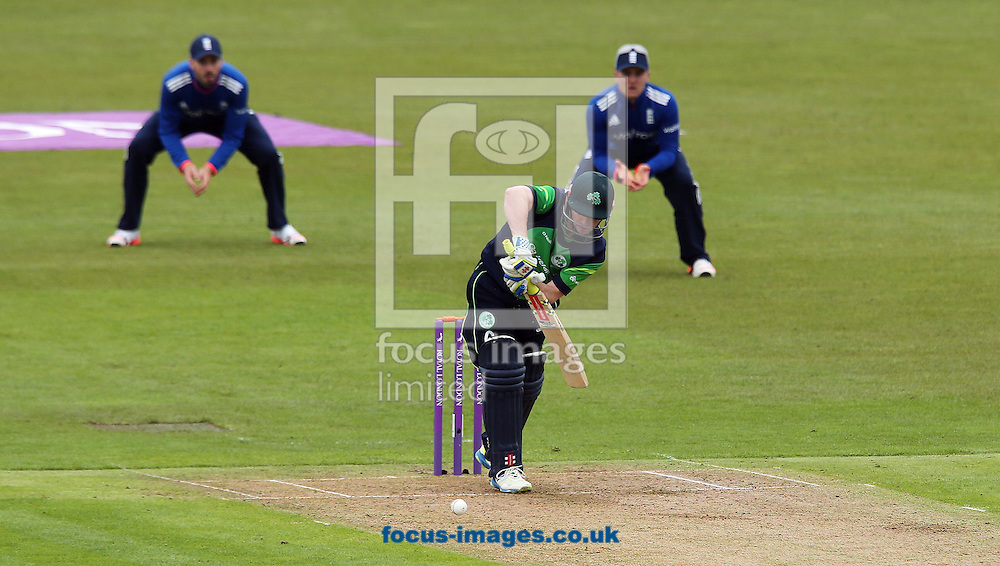 william Porterfield batting for Ireland during the One Day International match at the Village, Malahide<br /> Picture by Lorraine O'Sullivan/Focus Images Ltd +353 872341584<br /> 08/05/2015