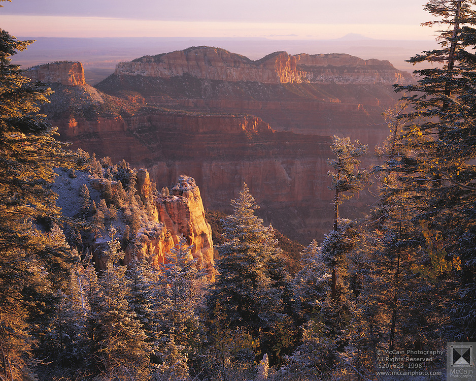 Sunrise after snowfall, Pt. Imperial, Grand Canyon Natl. Park, Arizona..Media Usage:.Subject photograph(s) are copyrighted Edward McCain. All rights are reserved except those specifically granted by McCain Photography in writing...McCain Photography.211 S 4th Avenue.Tucson, AZ 85701-2103.(520) 623-1998.mobile: (520) 990-0999.fax: (520) 623-1190.http://www.mccainphoto.com.edward@mccainphoto.com