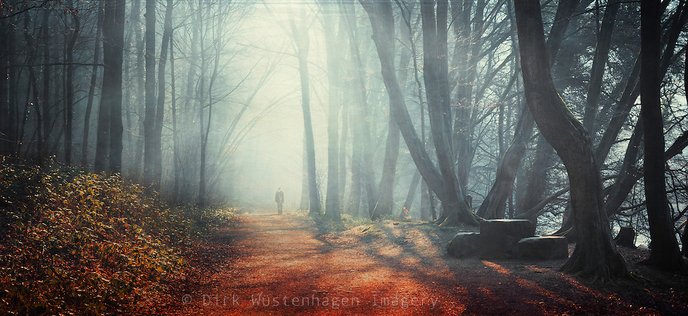 Panorama of a person walking in a forest with the light shining through the haze, texturized photograph. Solingen, Germany