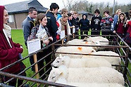 Teagasc Science WEEK