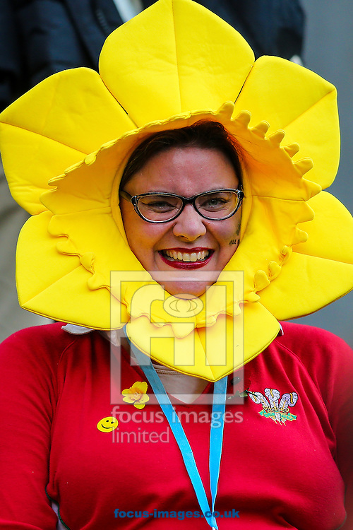 A welsh fan at the final of the 2015 Rugby World Cup at Twickenham Stadium, Twickenham<br /> Picture by Andy Kearns/Focus Images Ltd 0781 864 4264<br /> 31/10/2015
