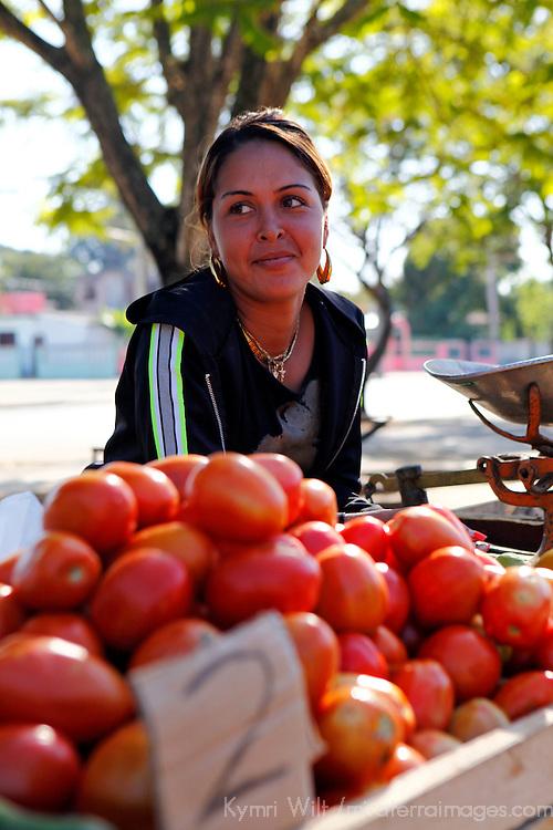 Central America, Cuba, Santa Clara. A Cuban girl sells tomatoes at a local farmer's market in Santa Clara.