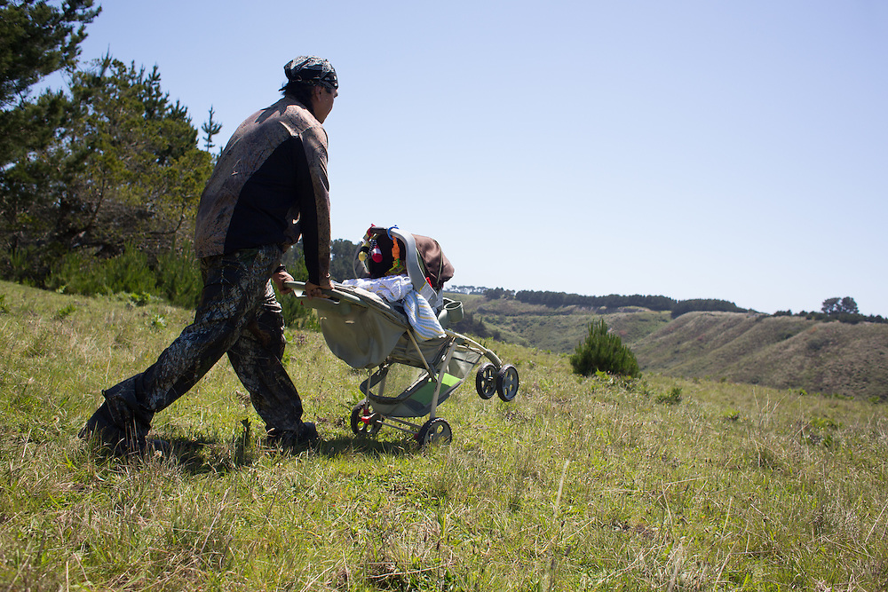 Isaac Rios is a Pomo Indian.  The newly created Stornetta Public Lands are of ceremonial and ancestral importance to the Pomo people.  Here, Isaac pushes his 8 month old son Lasha in a stroller onto the public lands to demonstrate the traditional way to harvest sage roots, used in basket making.