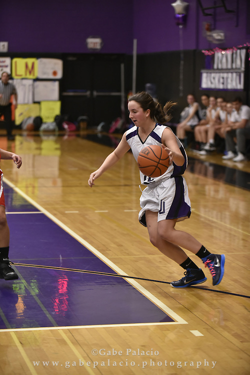 John Jay JV Basketball game at John Jay High School on January 29, 2016. (photo by Gabe Palacio)