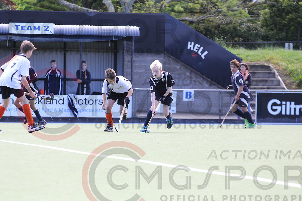 HATCH CUP 2017 DAY 3<br /> AUCKLAND B V HAWKE'S BAY<br /> <br /> Photo Chris Clarke CMGSPORT<br /> &copy;cmgsport2017